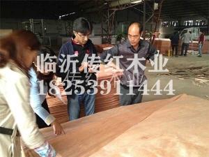 桃花芯单板生产厂家